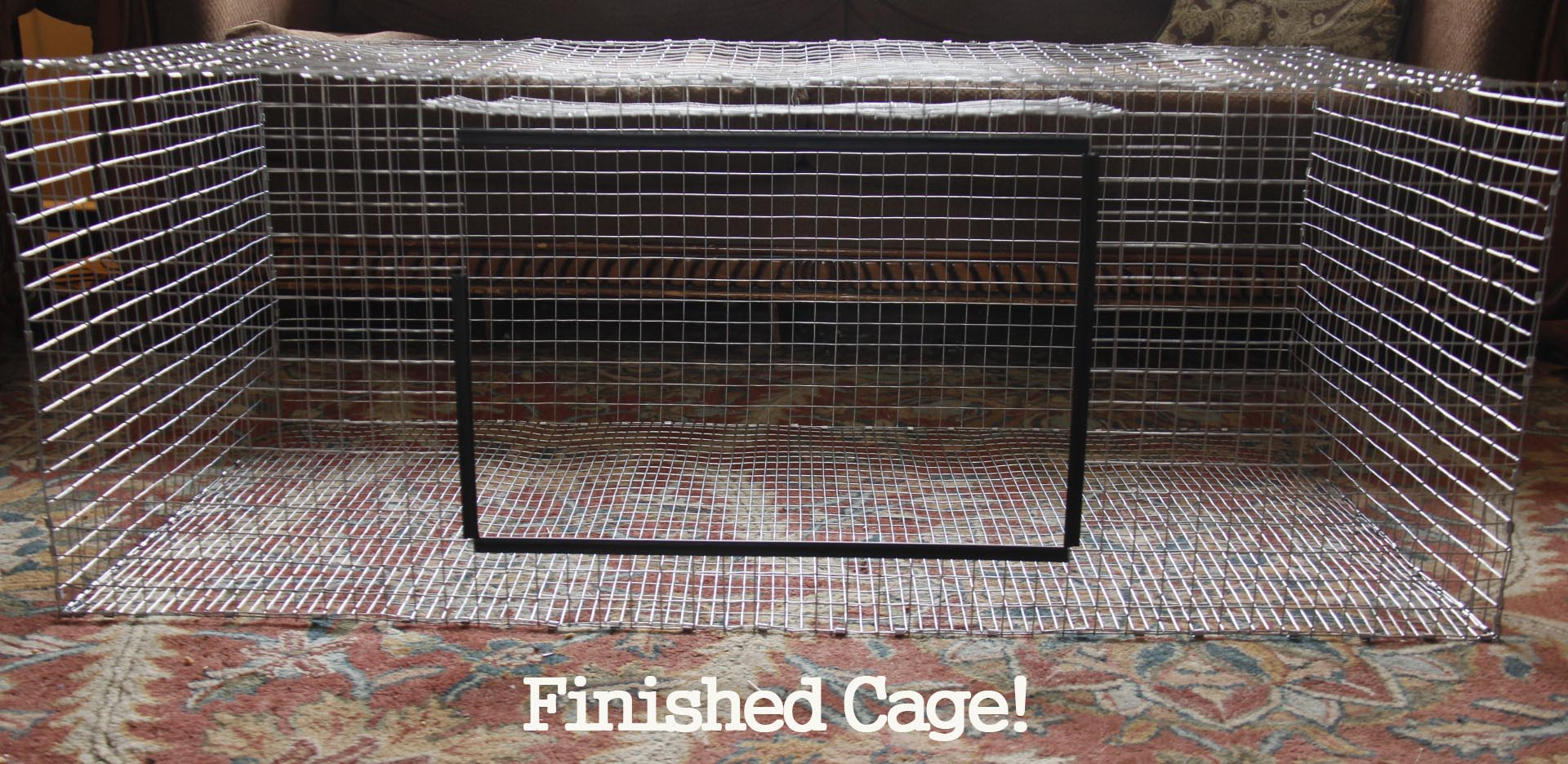 Bunny Cage Wire Lining Center Frenchdraindiagramjpg How To Build A Rabbit Heartfelt Angoras Rh Heartfeltangoras Com Hamster Cages Outdoor