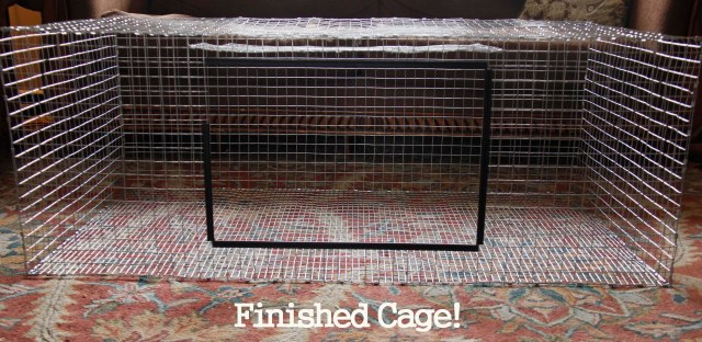 Here S The Finished Cage Except The Door Latches