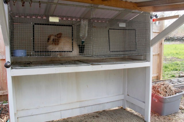 andre shelter