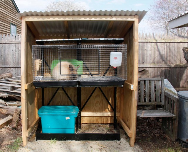 finished breeder doe shelter