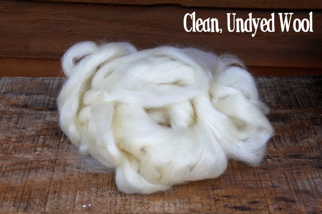 wensleydale wool, wool for dyeing, natural dyeing, how to dye naturally, how to dye with pokeberries, wool to dye with, fiber to dye with, what kind of fiber to dye with