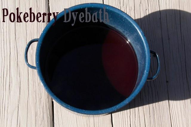 dyebath, poke berry dyebath, pokeberry dye, natural dyeing, natural dyeing with pokeberries, pokeweed